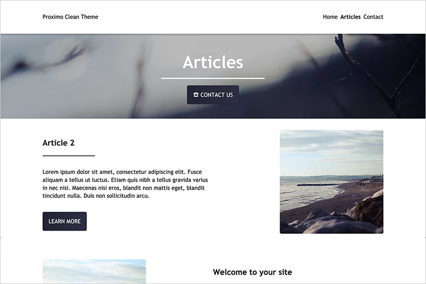 Proximo Clean Theme - Article Landing